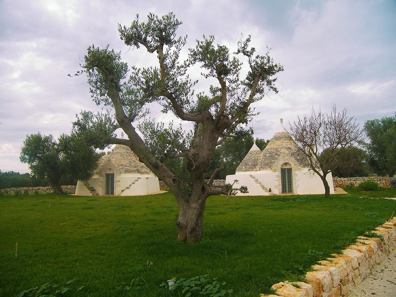 costruzioni restauri sirio ostuni nuova residenza privata ristrutturazione satia ostuni 100 3680
